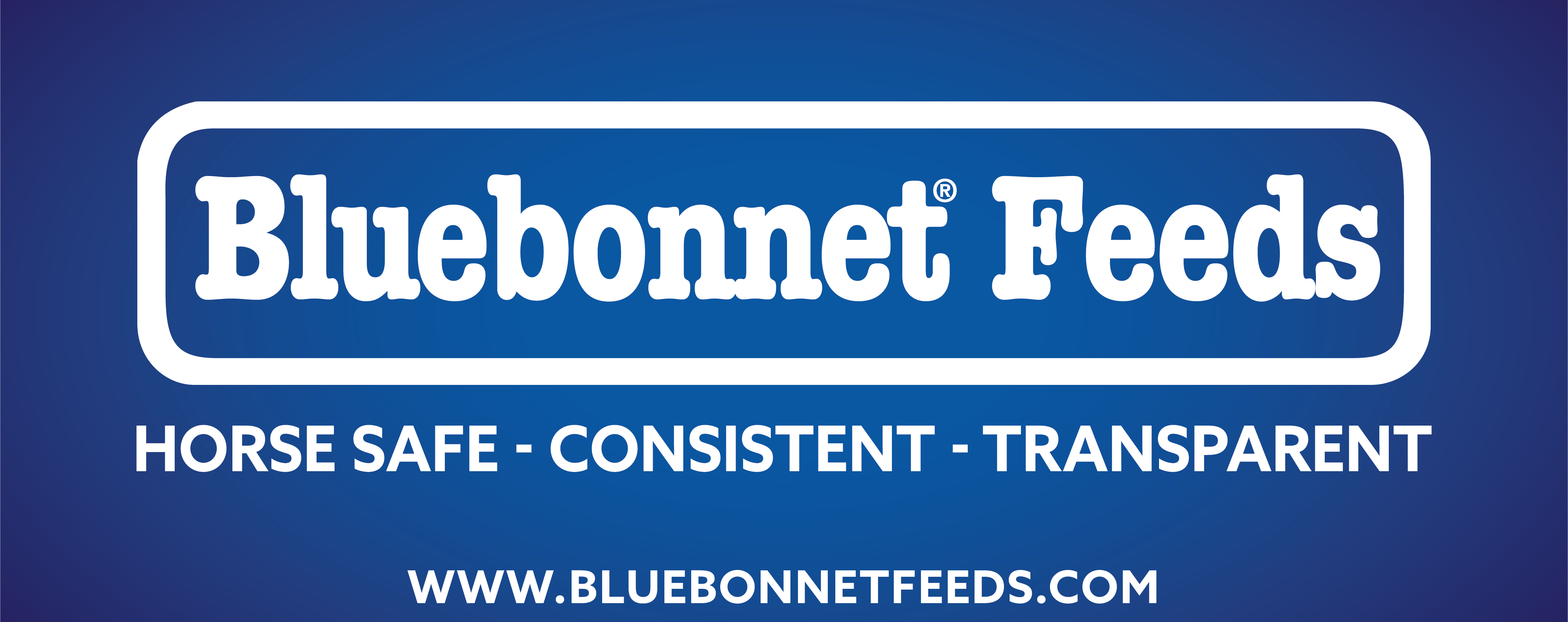 Image result for bluebonnet feeds