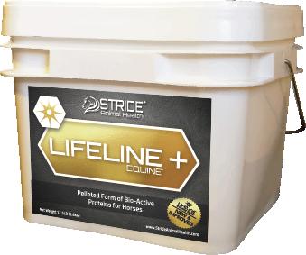lifeline-pail-web.png